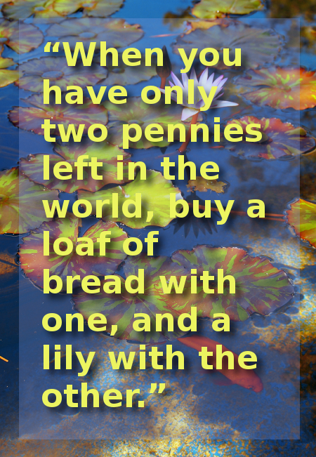 """When you have only two pennies left in the world, buy a loaf of bread with one, and a lily with the other."""
