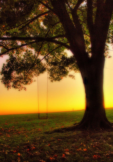Swing in the sunset Branford, CT. by slack12 at flickr